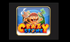 crazy-stone-gclub