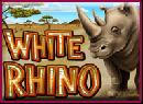 goldclub-white-rhino