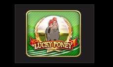 lucky-poney-gclub